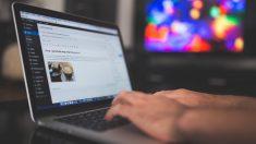 Los plugins son esenciales en WordPress