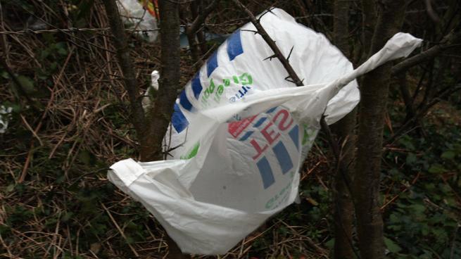 España prohibirá las bolsas de plástico en 2021 y será obligatorio cobrarlas desde el 1 del julio