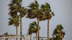 El clima tropical y sus famosas rachas de viento.