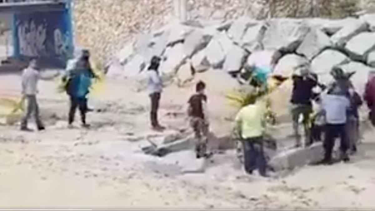 Enfrentamiento durante la retirada de cruces amarillas en la playa de Canet de Mar.