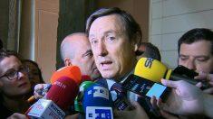 Rafael Hernando, portavoz del PP en el Congreso. (EP)