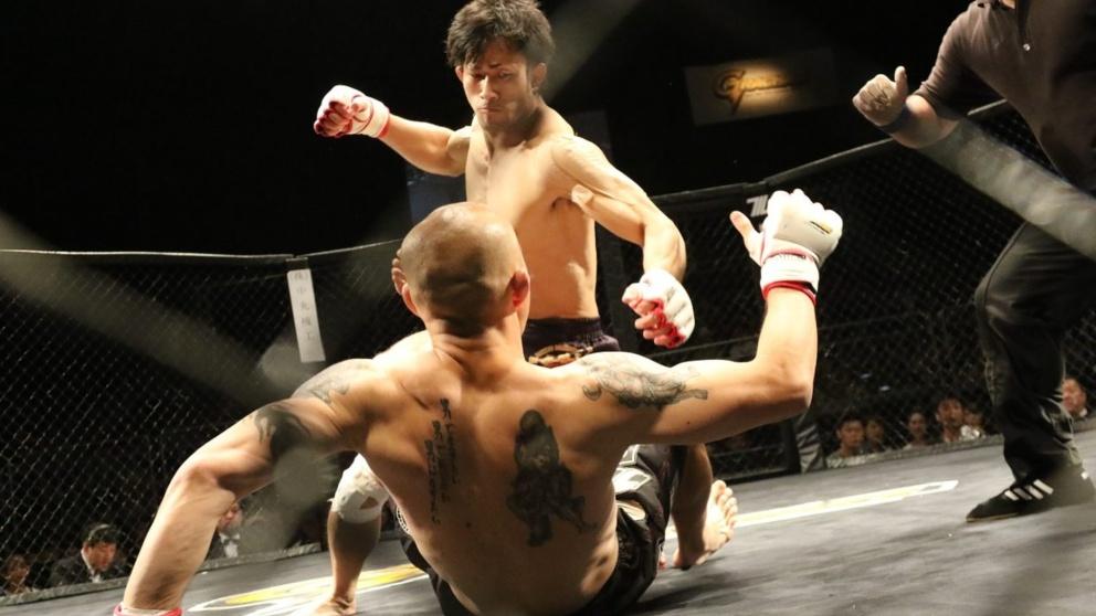 Las artes marciales mixtas incluyen múltiples disciplinas.