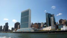 Los días mundiales se declaran en la sede de la ONU, en Nueva York.