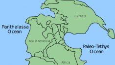 Pangea, el continente único