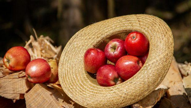 Receta de manzanas asadas con pimienta negra y orégano