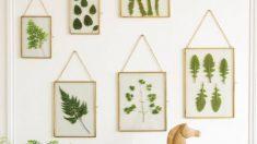 Pasos para pintar cuadros con hojas de manera fácil