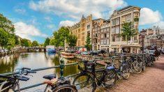 Lugares, rincones, y todo lo que no perderse en Ámsterdam