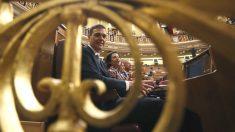 Pedro Sánchez en el Congreso. (Foto: Efe) | Presupuestos 2018.