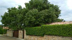 Fachada exterior de la mansión que Pablo Iglesias e Irene Montero se han comprado en Galapagar por al menos 660.000 euros.