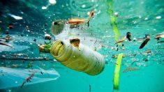 Plásticos en Mares (Istock)