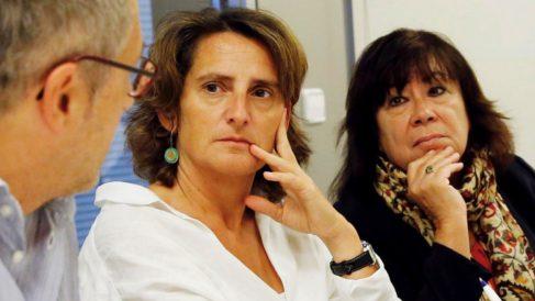 Teresa Ribera, ministra de Transición Energética. (Foto: PSOE)