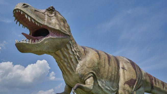 Conoce más sobre la extinción sobre los dinosaurios.