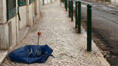 Pasos para saber cómo arreglar un paraguas roto