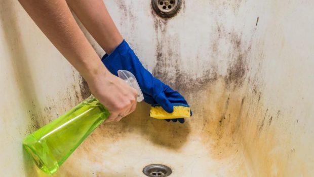 C mo limpiar el moho del ba o f cilmente paso a paso - Como limpiar azulejos del bano ...