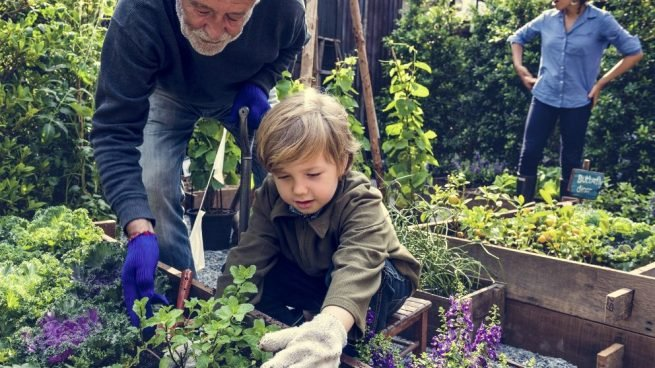 Cómo hacer una jardinera de madera paso a paso