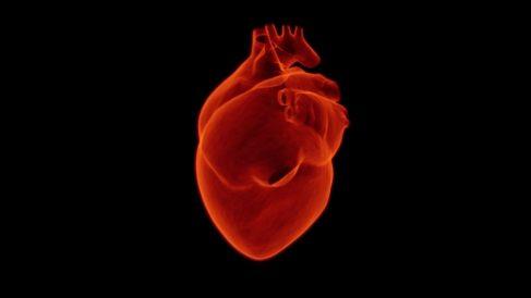 El infarto de miocardio es de los más populares.