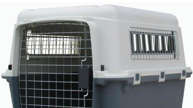 La arrestan por llevar niños en jaulas para mascotas en su camioneta