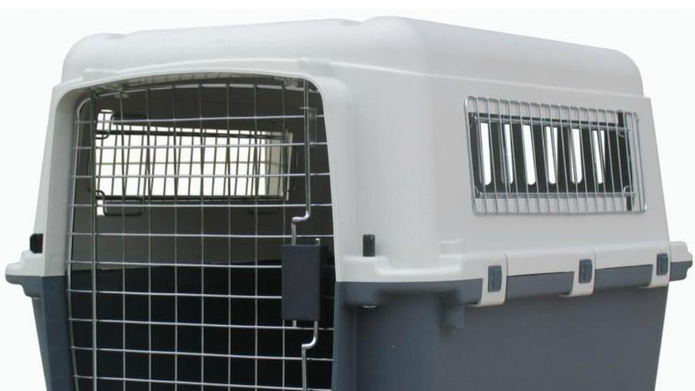 Abuela es detenida por llevar a sus nietos en transportines para mascotas