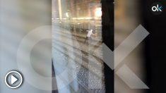 Grafiteros lanzan objetos al Metro de Barcelona