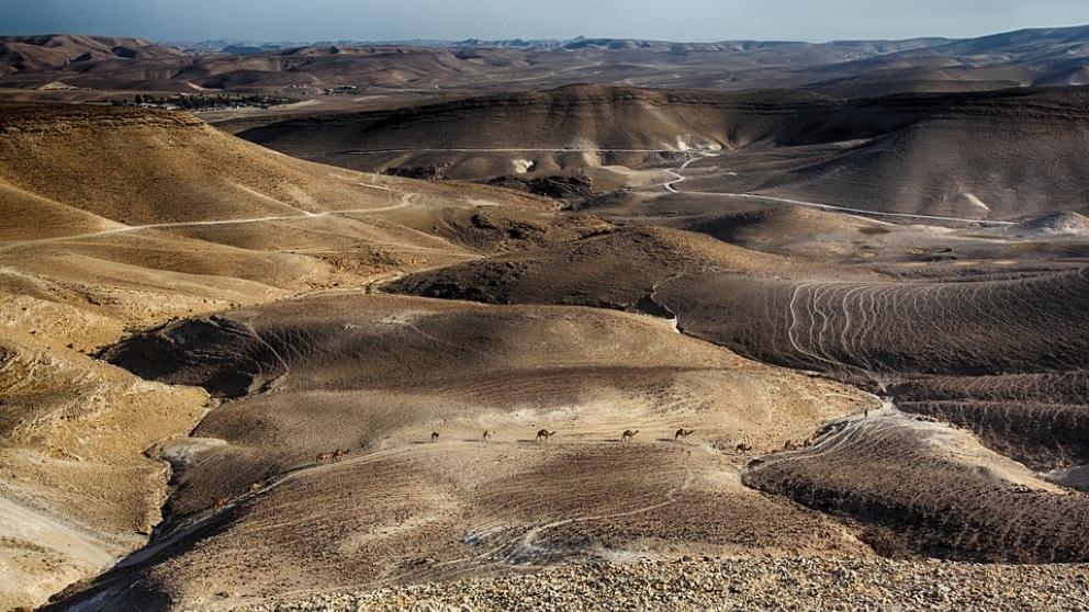 Los Manuscritos del Mar Muerto son más importantes de lo que se pensaba.