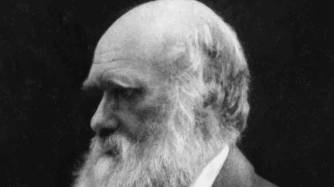 Frases célebres de Charles Darwin