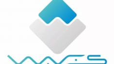 waves criptomoneda