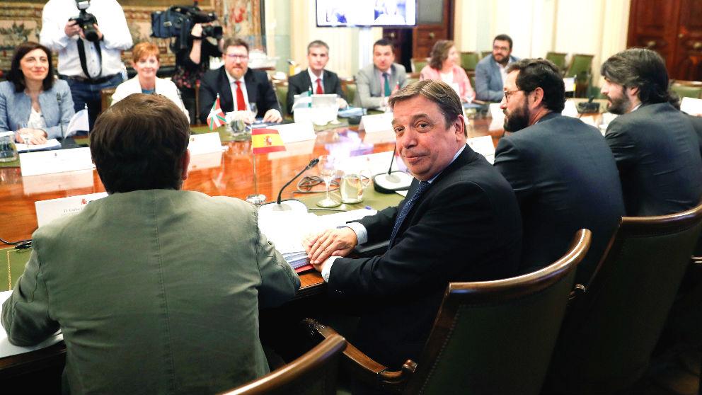El ministro de Agricultura, Pesca y Alimentación, Luis Planas (c), durante la reunión del Consejo Consultivo de Política Agrícola (Foto: Efe)