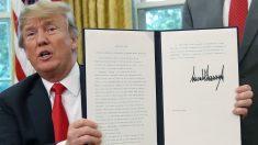 Donald Trump firma el decreto que pone fin a la separación en la frontera. (Foto: AFP)