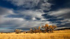 La Patagonia, clima arido y semiarido