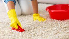 Guía para saber cómo limpiar una alfombra
