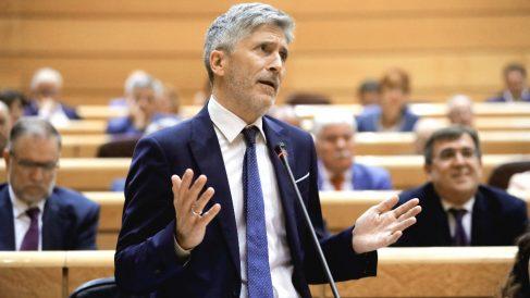 El ministro del Interior, Fernando Grande-Marlaska, durante la sesión del pleno del Senado. (Foto: Efe)