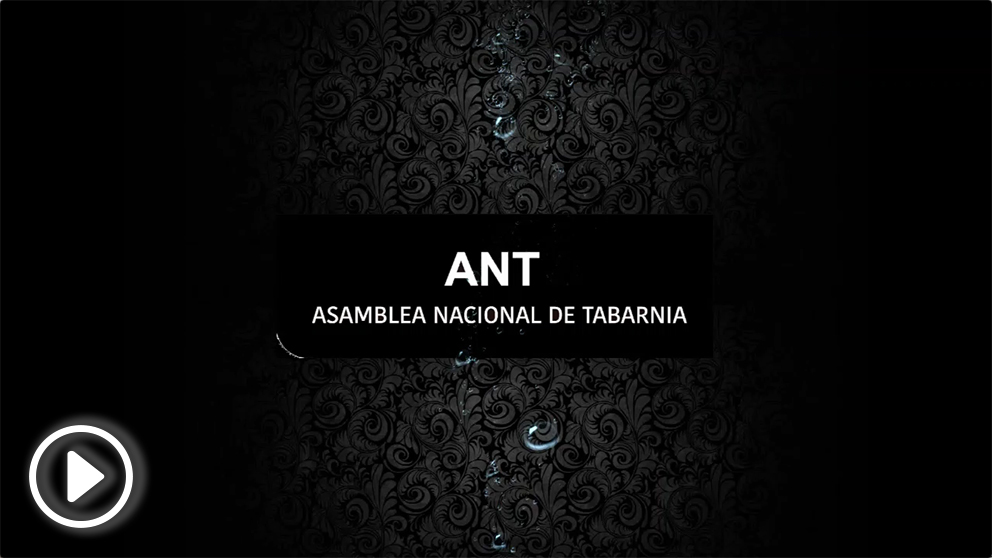 ANT-PLAY