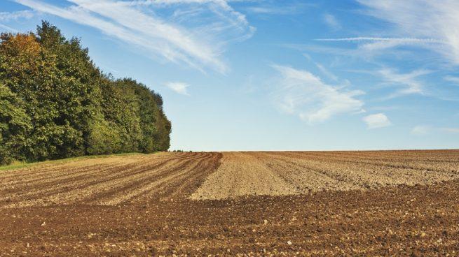 Qu saber sobre el agotamiento del suelo for Que es la clausula suelo de los bancos