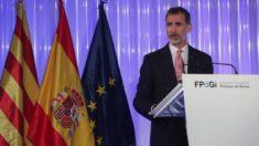 El Rey durante el discurso (FPidGI).