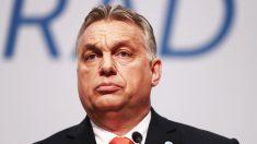 Viktor Orban, primer ministro de Hungría. (Foto: AFP)