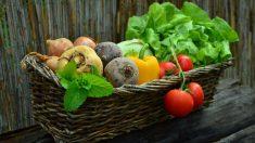 Aprende aquí a congelar verduras sin que pierdan sus propiedades