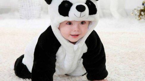 Aprende aquí a hacer un disfraz de oso panda casero fácilmente