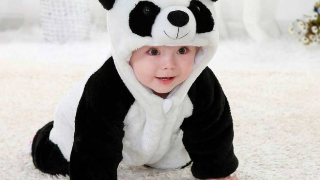 Como Hacer Un Disfraz De Oso Panda Casero Facilmente Paso A Paso - Como-hacer-un-disfraz-casero