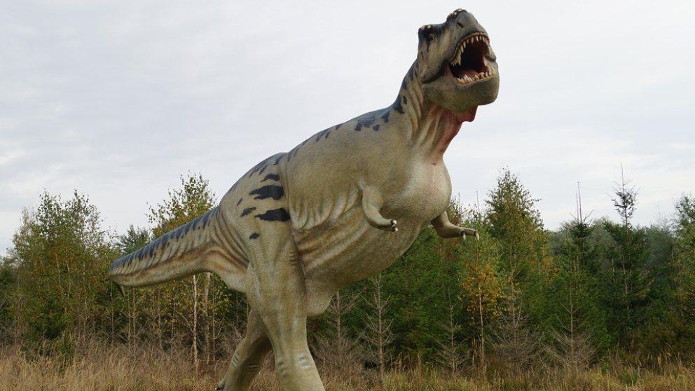 El Tiranosaurio Rex no te podría haber sacado la lengua