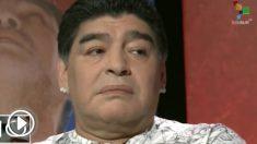 Maradona se ofrecer para entrenar gratis a Argentina.