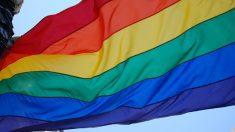 La festividad del orgullo gay tiene también protestas.