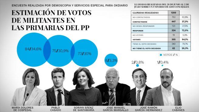 primarias pp