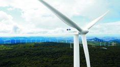 Parque eólico de Siemens Gamesa (Foto. Siemens Gamesa)