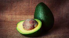 Las ventajas de comer aguacate en el embarazo