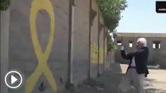boadella-amarillo-play