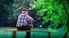 ¿Qué vitaminas refuerzan el organismo de las personas mayores?