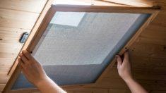 Los pasos para saber hacer mosquiteras caseras