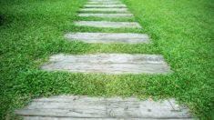 Pasos para hacer un sendero para jardin