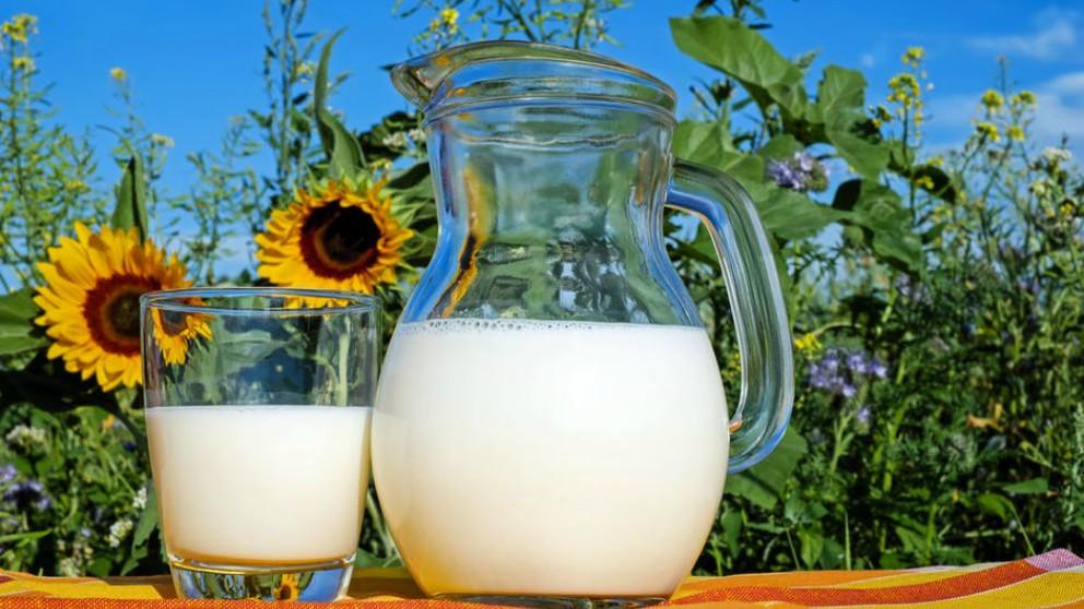 Las leches de origen vegetal para niños