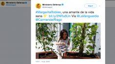 Tuit del Ministerio de Defensa sobre Margarita Robles.